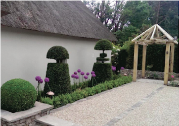 Decorative Landscape in Dublin